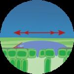 fertilizanți foliari Wuxal - adjuvanți